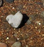 Камень сердца.  Японский утес-сад Стоковое Изображение