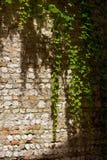 Камень стены Стоковые Фото