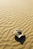 камень стороны пустыни Стоковая Фотография RF