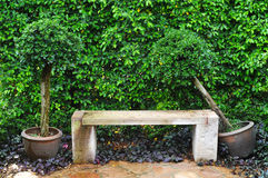 камень стула Стоковые Изображения RF