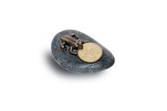 Камень с лягушкой Стоковые Изображения RF