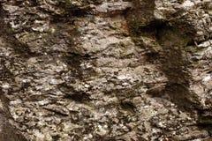 Камень текстурированный утесом Стоковая Фотография