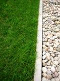камень травы Стоковые Изображения RF