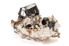 Камень турмалина макроса минеральный на белой предпосылке стоковые изображения rf