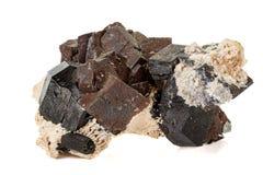 Камень турмалина макроса минеральный на белой предпосылке стоковое фото rf