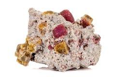 Камень турмалина макроса минеральный на белой предпосылке стоковое фото