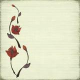 камень цветка конструкции предпосылки Стоковые Изображения
