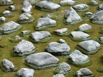 камень шага стоковые изображения