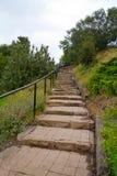 камень шагов Стоковые Фотографии RF