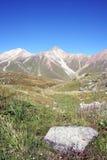 камень Шани горы травы tien долина Стоковая Фотография