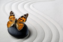 Камень Дзэн с бабочкой Стоковое фото RF