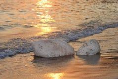 камень 02 Стоковые Изображения
