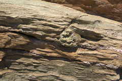 камень Стоковые Изображения RF
