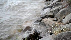 Камень сток-видео