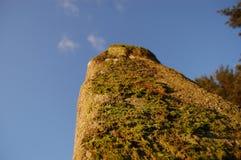 Камень Aberdeenshire стоящий Стоковые Фото