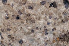 Камень Aegirine макроса в charoite на белой предпосылке стоковое фото rf