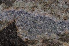 Камень Aegirine макроса в charoite на белой предпосылке стоковые фотографии rf