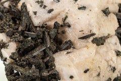 Камень Astrophyllite макроса минеральное на белой предпосылке стоковое изображение rf