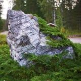 Камень Bokeh стоковое фото