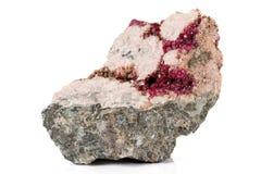 Камень Erythrite макроса минеральное на белой предпосылке стоковое изображение rf