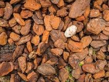 Камень Ioslated белый между деревянными щепками Стоковая Фотография