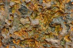 Камень Laterite Стоковые Фотографии RF