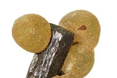 Камень Prehnite макроса минеральное на белой предпосылке стоковая фотография
