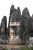 камень shilin пущи стоковое фото rf