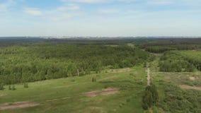 Камера летает над древесинами в направлении города, который увиден на горизонте Город на горизонте видеоматериал