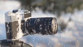 Камера на конце треноги вверх в лесе зимы акции видеоматериалы