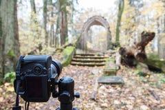 Камера на треноге в древесинах стоковые изображения rf