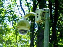 Камера слежения с деревьями стоковое изображение