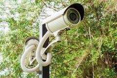 Камера слежения или CCTV Стоковые Изображения