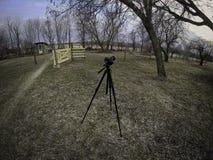 Камера установленная на треногу стоковые изображения rf