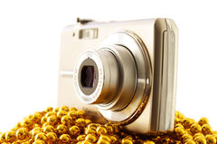 камера цифровая стоковые изображения rf