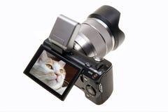камера цифровая Стоковое фото RF