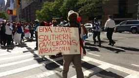 Камерун, южные протестующие Cameroons/Ambazonia, NYC, NY, США Стоковые Фото