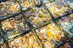 Камешек в шлюпке развалины Стоковые Изображения RF