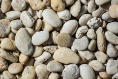 Камешек реки Стоковая Фотография