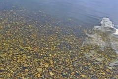 Камешек через чистую воду стоковое фото