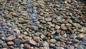 Камешки в бассейне Стоковые Фото
