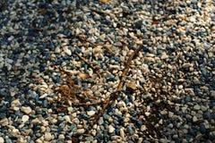 Камешки и естественные твердые частицы Стоковое фото RF
