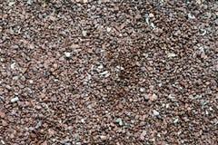 Камешки и малые камни на seashore Стоковое Изображение