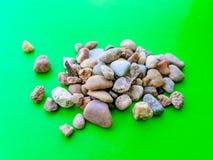 Камешки на зеленой предпосылке Стоковые Изображения
