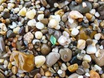 Камешки на seashore стоковое изображение rf