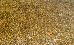 Камешки озера Стоковые Изображения RF