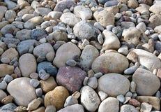 Камешки различных размера и формы, сада лета стоковое изображение rf