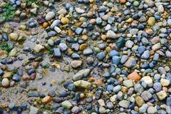 Камешки цвета Стоковые Изображения