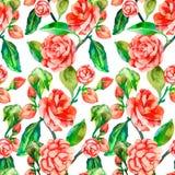 Камелия, подняла, безшовный цветочный узор Patte цветка акварели Стоковое Изображение