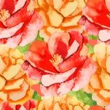 камелия Поднял картина цветков безшовная Стоковое Фото